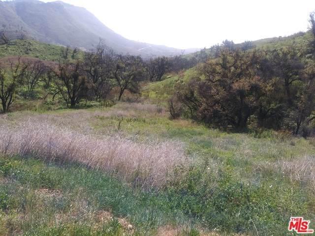 2517 Encinal Canyon Road - Photo 1