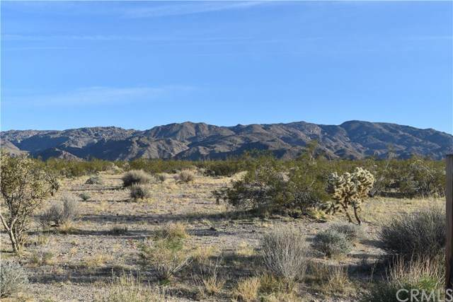 69731 Two Mile Road, 29 Palms, CA 92277 (#JT20052962) :: Sperry Residential Group