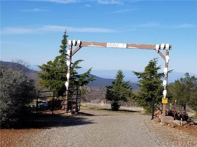 19605 Oasis Springs Ranch Rd, Paynes Creek, CA 96075 (#SN20042025) :: Sperry Residential Group