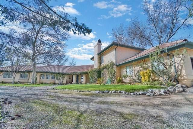 27660 Pine Canyon Road, Lake Hughes, CA 93532 (#SR20048959) :: RE/MAX Masters