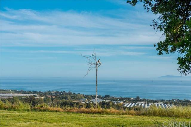 3600 Foothill Road, Carpinteria, CA 93013 (#SR20055185) :: Team Forss Realty Group
