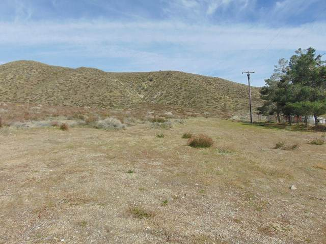 Vac/Vic 90 Stw/Ave N8, Leona Valley, CA 93551 (#220002877) :: Compass