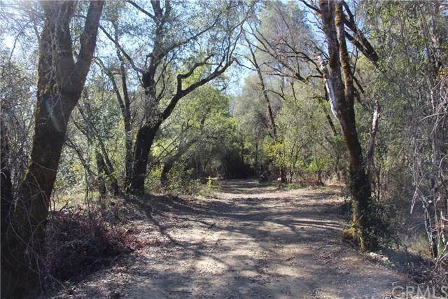 4945 Cole Creek Road, Kelseyville, CA 95451 (#LC20055496) :: A|G Amaya Group Real Estate