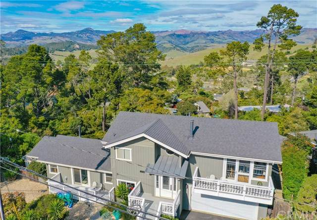 2096 Pineridge Drive, Cambria, CA 93428 (#SC20055365) :: Case Realty Group