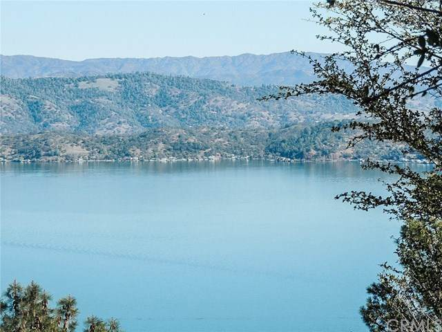9428 Fairway Drive, Kelseyville, CA 95451 (#LC20051338) :: The Costantino Group | Cal American Homes and Realty