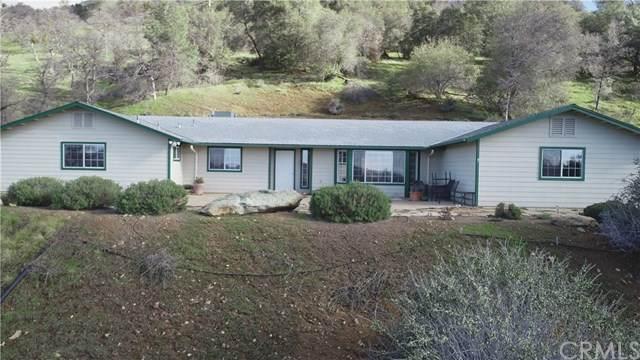 5630 Bear Trap, Mariposa, CA 95338 (#MP20053962) :: Z Team OC Real Estate