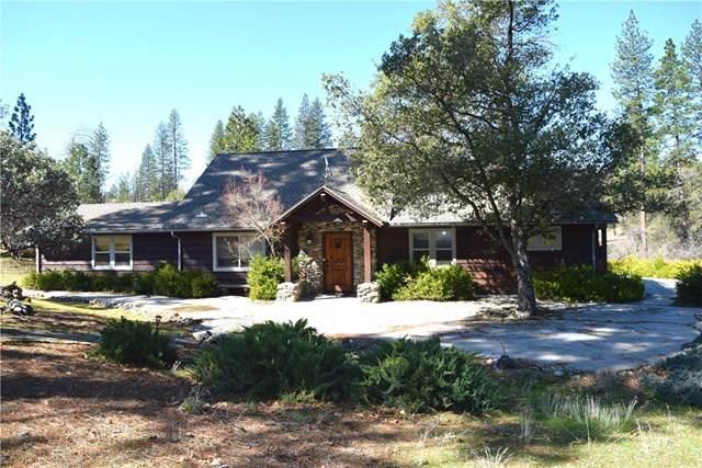 5915 Meadow Lane, Mariposa, CA 95338 (#MP20056694) :: Z Team OC Real Estate