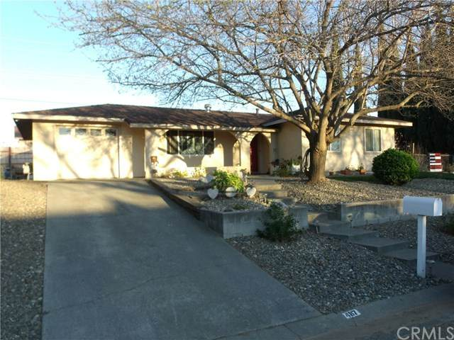 487 Del Norte Avenue, Corning, CA 96021 (#SN20057922) :: Team Tami