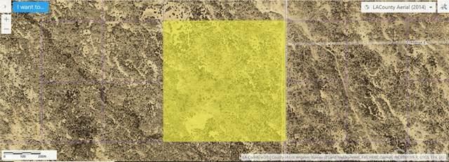 0 Vac/Vic 15 Ste/Ave E8, Redman, CA 93535 (#PW20058947) :: Powerhouse Real Estate