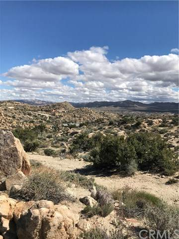 0 Buena Suerta Lane, Yucca Valley, CA 92284 (#JT20059088) :: The Brad Korb Real Estate Group
