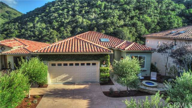 2535 Lupine Canyon Road, Avila Beach, CA 93424 (#SP20059943) :: RE/MAX Parkside Real Estate