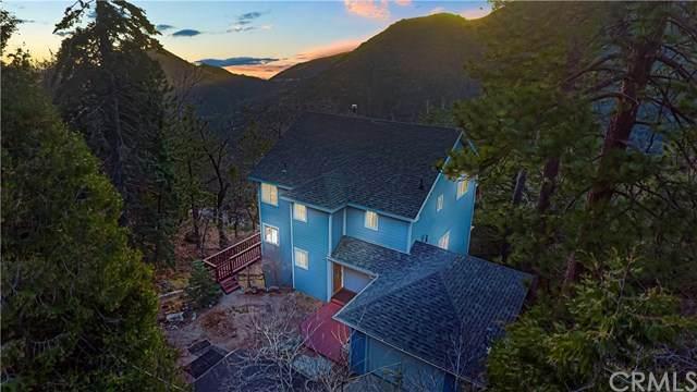 6437 Spruce Avenue, Angelus Oaks, CA 92305 (#CV20060173) :: Z Team OC Real Estate