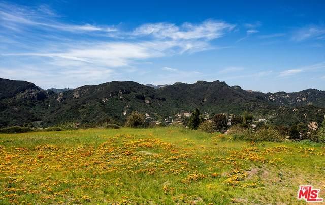 1445 El Bosque Court, Pacific Palisades, CA 90272 (#20565650) :: Better Living SoCal