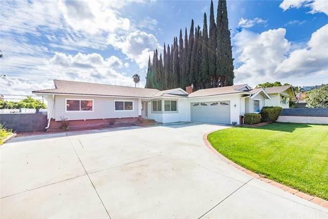 1226 Old Canyon Drive, Hacienda Heights, CA 91745 (#CV20060650) :: Crudo & Associates
