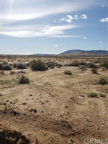 1 Utah, 29 Palms, CA  (#JT20061205) :: The Brad Korb Real Estate Group