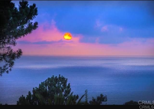 722 Amphitheatre, Del Mar, CA 92014 (#200014079) :: Cal American Realty