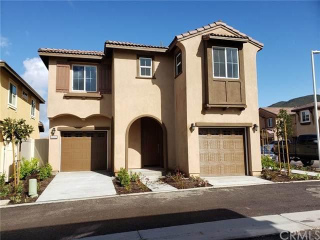 35350 White Camarillo Lane, Fallbrook, CA 92028 (#SW20062135) :: A|G Amaya Group Real Estate