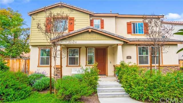 6141 Grapevine Way, Riverside, CA 92504 (#PW20061618) :: American Real Estate List & Sell