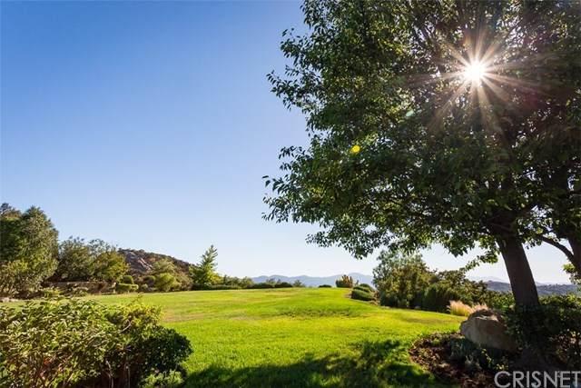 24030 Alder Place, Calabasas, CA 91302 (#SR20062495) :: Allison James Estates and Homes