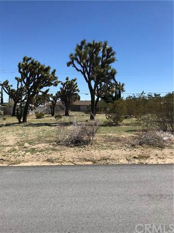 0 Chia Ave Avenue, Yucca Valley, CA 92284 (#JT20062755) :: RE/MAX Masters