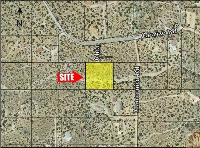 0 Chia Ln, Mountain Center, CA 92561 (#219041246DA) :: The Laffins Real Estate Team