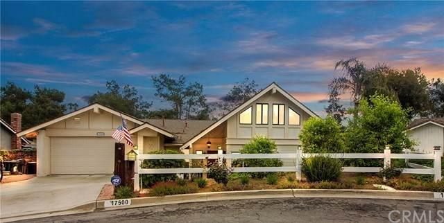 17500 Olive Tree Circle, Yorba Linda, CA 92886 (#PW20063348) :: Team Tami