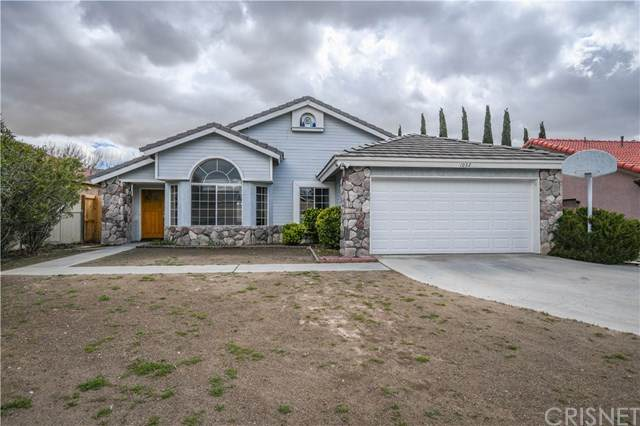 1032 Hook Avenue, Rosamond, CA 93560 (#SR20064283) :: Crudo & Associates