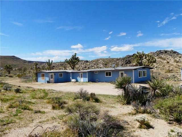 2159 Wamego Trail, Yucca Valley, CA 92284 (#JT20064460) :: Go Gabby