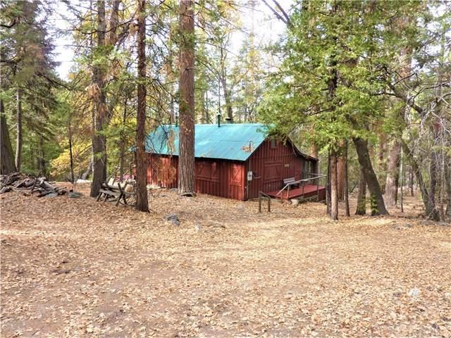 28 Stetson Creek Tract, Angelus Oaks, CA 92305 (#EV20064185) :: A G Amaya Group Real Estate