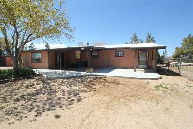 1341 Warren Vista Avenue, Yucca Valley, CA 92284 (#EV20064852) :: Go Gabby