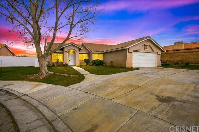38224 Mentor Court, Palmdale, CA 93550 (#SR20064867) :: Go Gabby