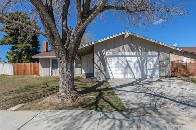44239 Watford Avenue, Lancaster, CA 93535 (#SR20065114) :: Cal American Realty