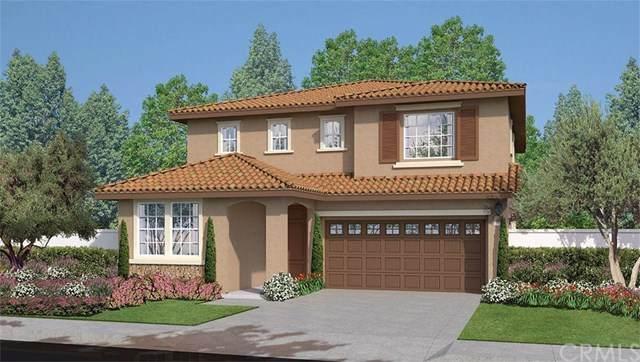 212 Pantaneiro Place, Fallbrook, CA 92028 (#SW20065399) :: A|G Amaya Group Real Estate