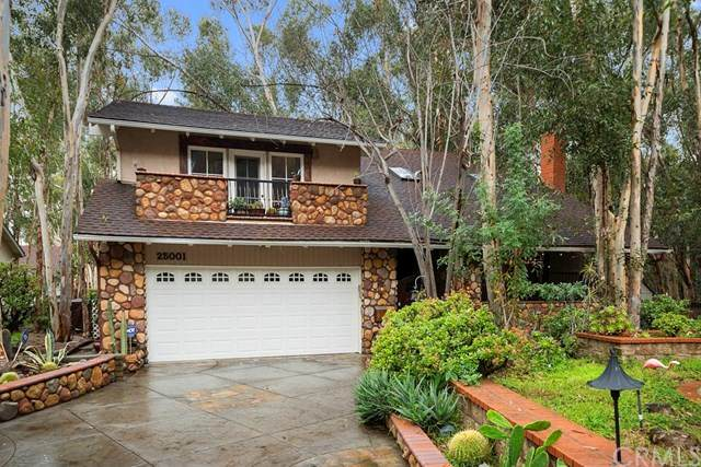 25001 Rivendell Drive, Lake Forest, CA 92630 (#OC20057418) :: RE/MAX Masters