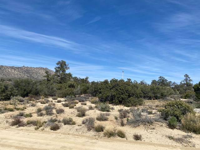 0 Palm Canyon Drive - Photo 1