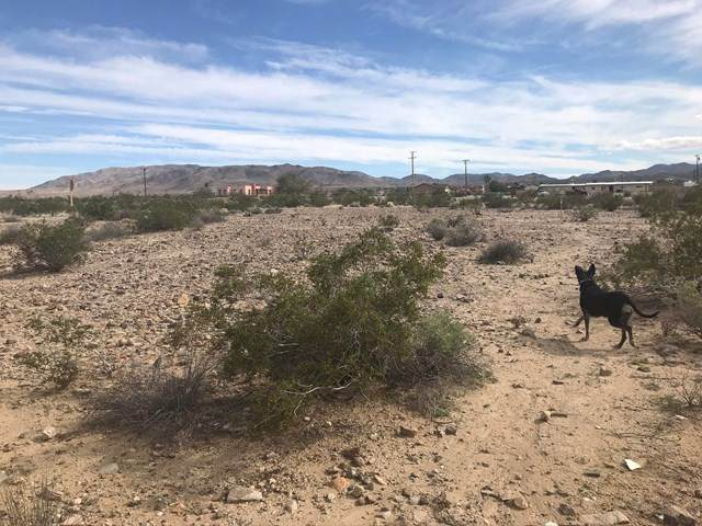 Lot 28 Twentynine Palms Highway - Photo 1
