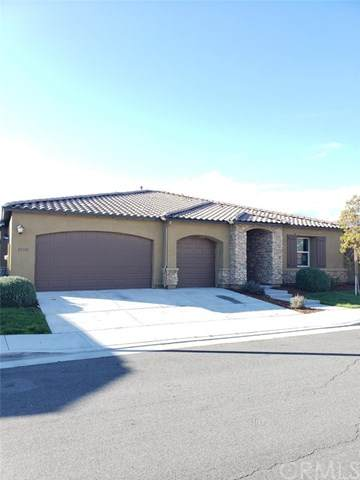 29385 Bullpen Way, Lake Elsinore, CA 92530 (#SW20064865) :: Team Tami