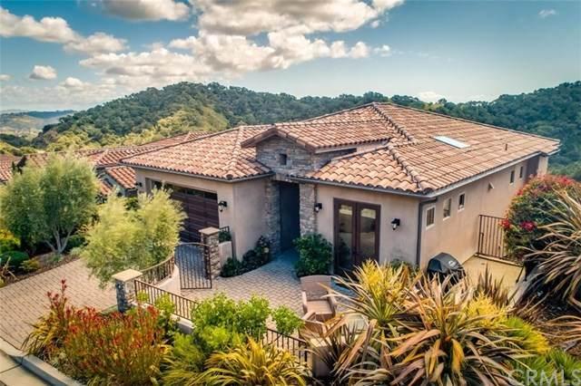 2865 Rock Wren Lane, Avila Beach, CA 93424 (#PI20065377) :: Rose Real Estate Group