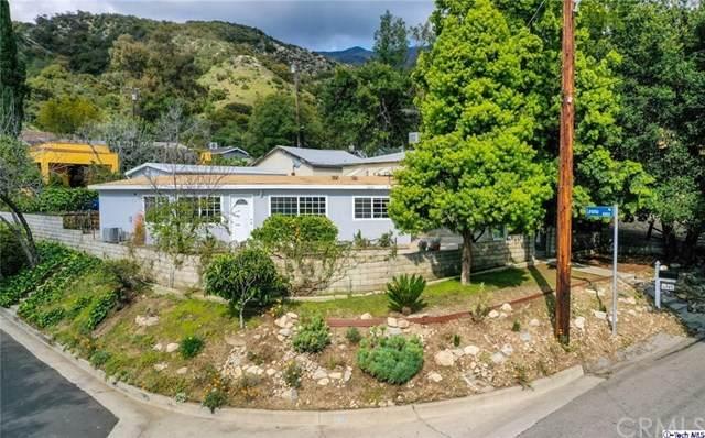 6547 Day Street, Tujunga, CA 91042 (#320001192) :: The Brad Korb Real Estate Group