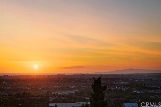 33 Trumpet Vine, Irvine, CA 92603 (#OC20066553) :: Better Living SoCal