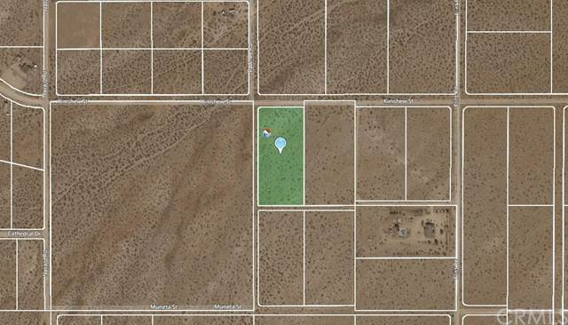 5-Acres Kimshew Street, Apple Valley, CA 92307 (#CV20066633) :: Allison James Estates and Homes