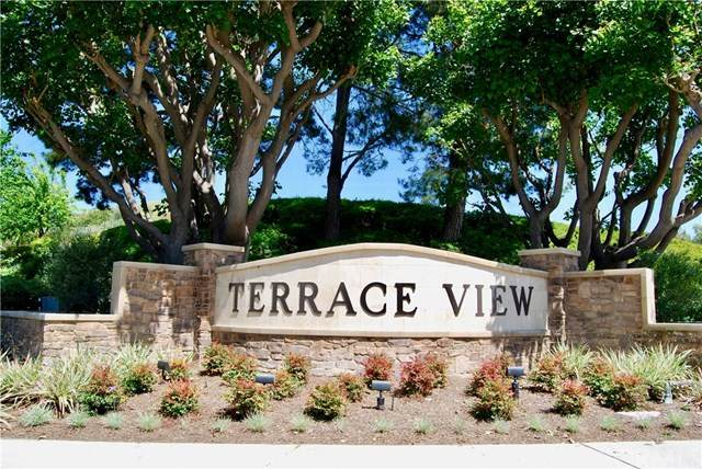 164 Valley View, Mission Viejo, CA 92692 (#OC20066772) :: The Bhagat Group