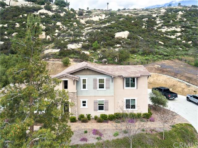14188 Winged Foot Circle, Valley Center, CA 92082 (#IV20066660) :: Allison James Estates and Homes