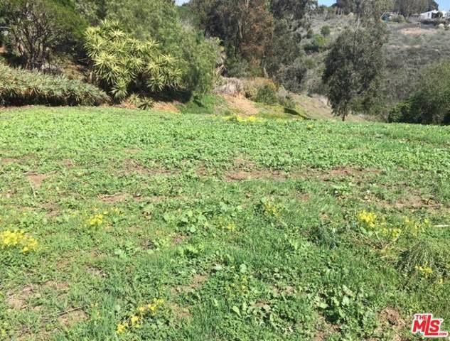 0 Wandermere Road, Malibu, CA 90265 (#20557892) :: Wendy Rich-Soto and Associates