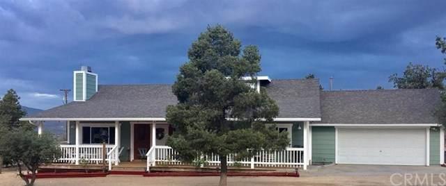 60543 St Bernard Drive, Mountain Center, CA 92561 (#EV20067222) :: Allison James Estates and Homes