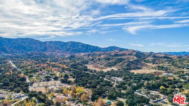 26837 Sand Canyon Road, Canyon Country, CA 91387 (#20568398) :: Sperry Residential Group