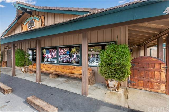 4825 5th Street, Fallbrook, CA 92028 (#SW20033022) :: The Marelly Group | Compass
