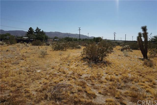 6101 Scenic Drive, Joshua Tree, CA 92252 (#NP20067491) :: Legacy 15 Real Estate Brokers