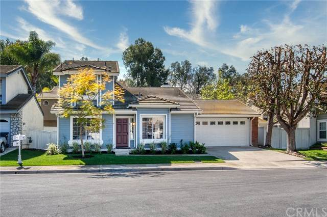 6 White Pelican Lane, Aliso Viejo, CA 92656 (#LG20067922) :: Case Realty Group