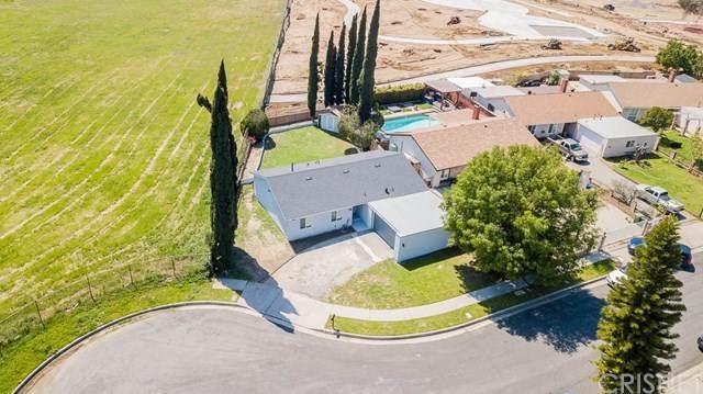 12541 Amboy Avenue, Sylmar, CA 91342 (#SR20068042) :: Fred Sed Group